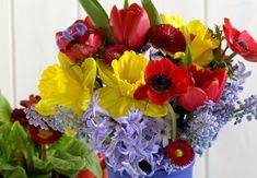 Jak se zbavit škůdců? Ověřenými metodami | Prima nápady Floral Wreath, Wreaths, Flowers, Plants, Home Decor, Floral Crown, Decoration Home, Door Wreaths, Room Decor