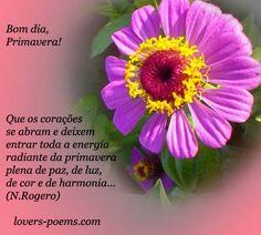 diário de gratidão: Bom dia Primavera