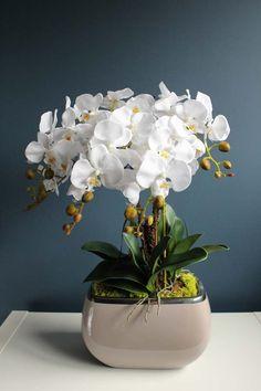House Plants Decor, Plant Decor, Potted Orchid Centerpiece, Corporate Flowers, Indoor Flowers, Calla Lillies, White Orchids, Pretty Flowers, Houseplants