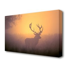 East Urban Home sunset stag stretched wild life canvas. printed on heavy weight canvas. mounted on to box frame. this sunset stag wild life canvas is ready to hang straight from the box. Size: 66 cm H x cm W Canvas Prints, Painting, Painting Prints, Graphic Art Print, Artwork, Canvas Online, Photographic Print, Art Materials, Canvas Art