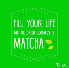 27 Best Matcha Quotes Images Matcha Asylum High Tea