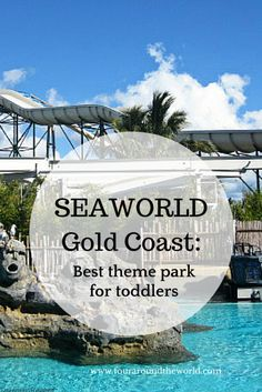 SeaWorld Gold Coast: The best theme park for toddlers in Australia