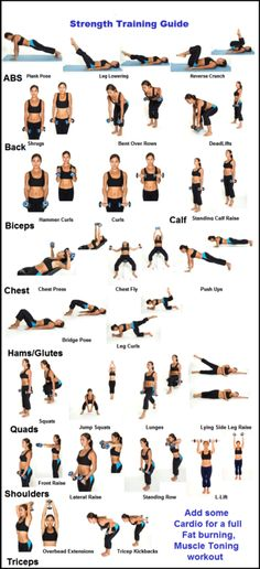 guide to strength training