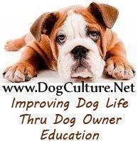 improve  life