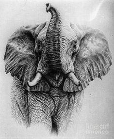 Good drawing of elephant with its trunk up. Good drawing of elephant with its trunk up. You are in the right place ab - Elephant Trunk Up, Elephant Wall Art, Elephant Tattoo Design, Elephant Tattoos, Realistic Elephant Tattoo, Grey Ink Tattoos, Crow Tattoos, Phoenix Tattoos, Ear Tattoos