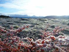 Antartica Chilena Province, Chile