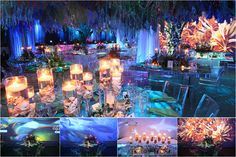 National Geographic Evening of Excellence by Syzygy Event Productions, Under the Sea