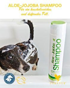 Ab und zu braucht auch ein Fell eine Reinigung – mit einem sanften, pflegenden Shampoo. Reine Aloe Vera und jojobalöl sorgen im ALOE-JOJOBA SHAMPOO für einen glänzenden Auftritt. Befeuchte einfach das Fell deines kleinen Rackers mit lauwarmem Wasser, verteile und massiere das Shampoo ein und spüle es nach einer kurzen Einwirkest aus. Das ALOE-JOJOBA SHAMPOO reinigt auch raues Tierhaar perfekt. Auerßdem werden unangenehme Gerüche durch das Lavendelöl überdeckt. Jojoba Shampoo, Personal Care, Water, Self Care, Personal Hygiene