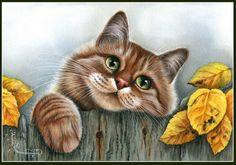Irina Garmashova Cats