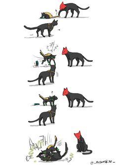 리밥/むぎめし в Твиттере: «BAT-CAT NOT FAT CAT https://t.co/0Tz2gfMDqI»