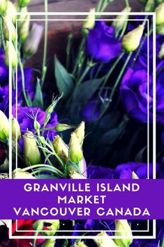 In Granville Island Market you'll find fantastic bistros & cafes, art galleries, community spaces, an art school, buskers & more. #vancouver #canada #granvilleIsland #Canadamarkets #farmersmarkets via @https://www.pinterest.com/xyuandbeyond/