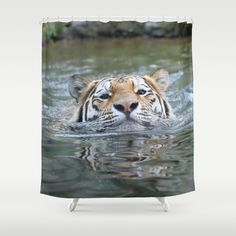 #Swimming tiger #Shower Curtain by #Jamfoto - $68.00 #Society6.com