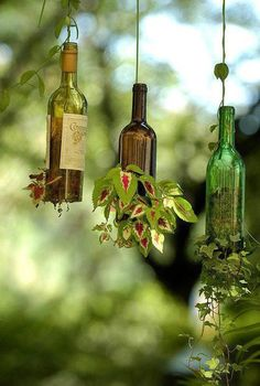 Wine Bottle Planters...The Cottage House instructions say: Go to your craft store and buy a bottle cutter, cut the bottom off and fill half full of soil, then place in plants, water and let lay {down} for 5 days or more, the roots will expand and hold in the soil, hang with a wire and water thru the top!