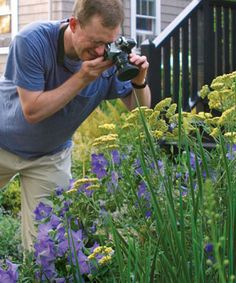 Tips for great garden photography