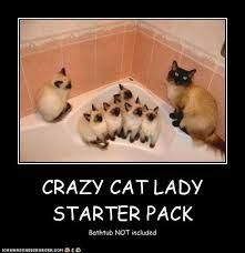 Crazy Cat Lady Starter Kits Now Available Here!! - Catnip Daily