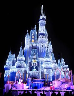 Disney world at Christmas time!