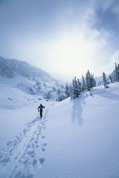 Trekking through the snow! Get Outdoors, The Great Outdoors, Ski Touring, Sports Wallpapers, Desktop Wallpapers, Cross Country Skiing, Mountaineering, Outdoor Activities, Vermont