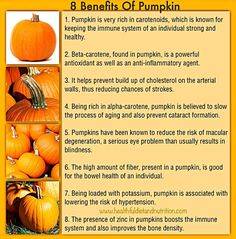 Healthful Diet & Nutrition promotes health and wellness by sharing basic information about how to maintain good health and prevent diseases. Pumpkin Nutrition Facts, Pumpkin Health Benefits, Health And Nutrition, Health And Wellness, Wellness Mama, Health Tips, Health Care, Healthy Mind, Healthy Habits