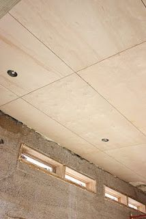 The Push House: Plywood Ceiling looks amazing!