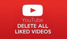 Get Unlike Videos Script – Remove Liked Videos on Autopilot Social Media Services, Social Media Marketing, Julia Kelly, Coconut Health Benefits, Script, Facebook Likes, Relaxing Music, Internet Marketing, Youtube