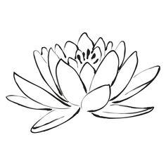 Flower Sketches, Art Sketches, Art Drawings, Drawing Art, Tattoo Roman, Flower Outline, Lotus Flower Art, Lotus Flower Meaning, Flower Wall Decals