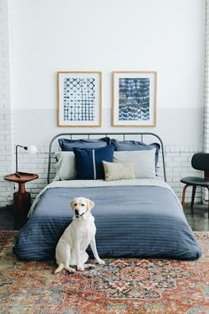 Nothing more Americana than this. A Golden Retriever & @TommyHilfiger. Bedding is now available @macys #TommyPartner