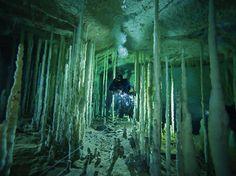 Underwater cave, Abaco Island, northern Bahamas
