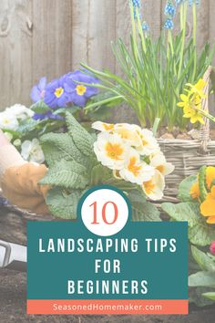 Most people never attempt a new garden landscape because they don't know where to start. In this popular pin I have 8 Gardening Landscape Tips for Beginners that will teach you How to Landscape. Vegetable Garden For Beginners, Home Vegetable Garden, Gardening For Beginners, Gardening Tips, Landscape Design, Garden Design, Outdoor Landscaping, Landscaping Ideas, Diy House Projects