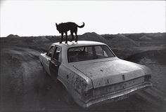 """""""Dusk in Coober Pedy, South Australia, 1978"""" Wim Wenders"""
