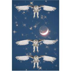 Les Hiboux de Trois Nuits   08/14/2011 #owl #hibou #bird #oiseau