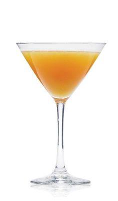 Apple Cider Martini Vodka Cocktail Recipe