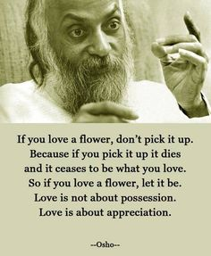If you have a flower, don't pick it up. Because if you pick it up it dies and ceases to be what you love. So if you love a flower, let it be. Love is not about possession. Love is about appreciation -Osho-