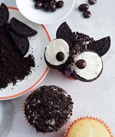 Easy owl cupcakes for Halloween. Use halved chocolate sandwich cookies for the oversize eyes and pointy ears.