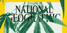 National Geographic June Weed issue tells about the science, potential to heal.