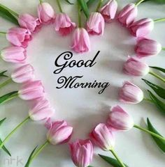 Good morning Photo Today is a New Day , Good morning Pictures Today is a New Day , Good morning Wallpaper Today is a New Day , Good morning Photo Today is a New Day . Latest Good Morning Images, Good Morning Images Download, Good Morning Images Hd, Good Morning My Love, Good Morning Picture, Good Morning Flowers, Good Morning Messages, Morning Pictures, Morning Pics