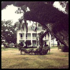 Felicity Plantation, Vacherie, Louisiana