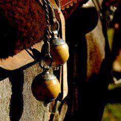 Horse tack / image by Eduardo Amorim via Flickr