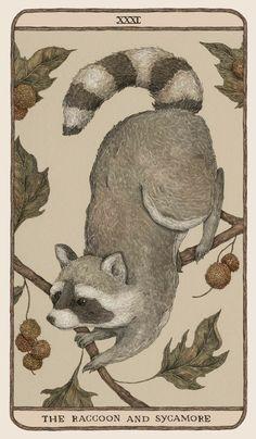 Arte 8 Bits, Art Aquarelle, Peony Print, Small Art, Woodland Creatures, Art Inspo, Illustration Art, Raccoon Illustration, Animal Illustrations