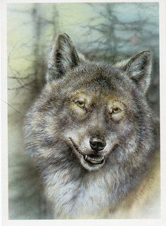Russian vintage postcard Wolf in forest by by sharonfostervintage, $3.00