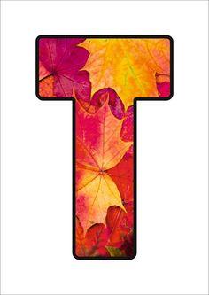 Autumn Activities, Alphabet, Font Styles, Preschool, Fonts, Symbols, September, Crafts, Fall