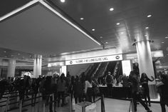 Day 3 of Hillsong Conference at New York 2014 | Stefany