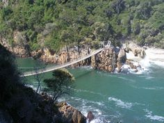 KONTOURS private tours Forest Fantasy Storms River Garden Route, Adventure Activities, Storms, Highlights, Fantasy, River, Outdoor, Thunderstorms, Outdoors