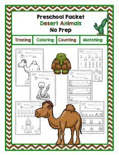 29 best animals desert animals images