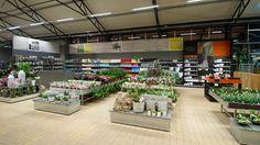 Tropical, Flower Nursery, Garden Centre, Farm Gardens, Gardening, Table Decorations, Amp, Flowers, Plants