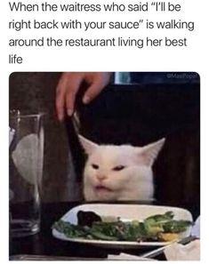 32 Funny Pics To Kickstart The Day – Humor Bilder Memes Humor, Chisme Meme, Cat Memes, Jokes, Funny Animal Memes, Funny Relatable Memes, Funny Posts, Funny Animals, Funniest Memes