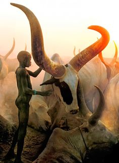 Tribu Dinkas (Sudán)