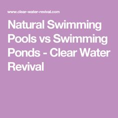 Natural Swimming Pools vs Swimming Ponds - Clear Water Revival