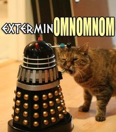 Daleks don't stand a chance against the kitties