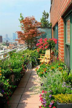 Small Balcony Design, Small Balcony Garden, Small Balcony Decor, Balcony Plants, Small Backyard Gardens, Backyard Garden Design, Small Space Gardening, Small Garden Design, Terrace Garden