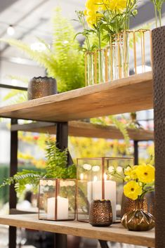 Back bar filled with sunny yellow James Beard Foundation, Back Bar, Floral Design, Table Decorations, Yellow, Furniture, Home Decor, Decoration Home, Room Decor